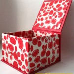 kırmızı dekoratif kutu box