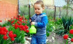 Çocuk güvenliği için bahçe çitleri
