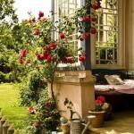 bahçe ve balkon fikirleri