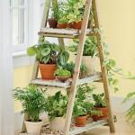 ev dekorasyon fikirleri ile bitki tasarımı