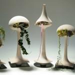 ev için dekoratif bitki tasarımı