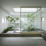 banyoda-da-bitki-olur_524d36c5927e7