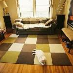 mobilya uyumlu halı seçimi