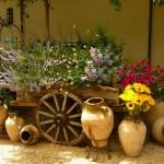 bahçe dekoru