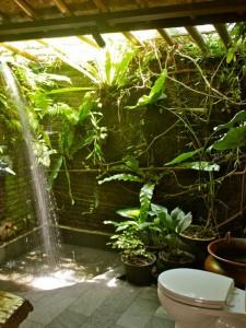 bahçede banyo yeşil bitki dekor
