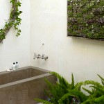 banyo yeşil bitkiler dekor