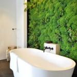 banyoda bitki dekor